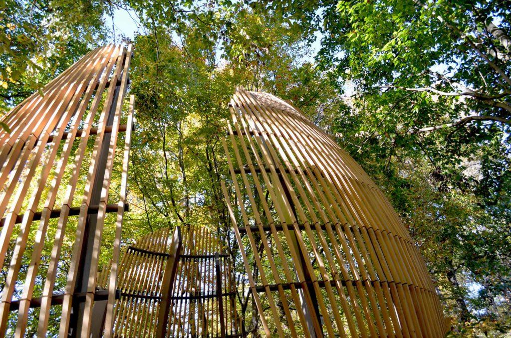 Fernbank WildWoods, Van Winkle Construction, Perkins + Will, Sylvatica, Museum in Atlanta, GA