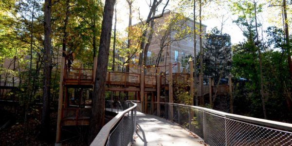 Fernbank WildWoods, Van Winkle Construction, Perkins + Will, Sylvatica, Museum in Atlanta, GA