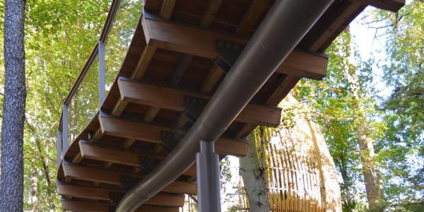 Canopy, Fernbank WildWoods, Van Winkle Construction, Perkins + Will, Sylvatica, Museum in Atlanta, GA