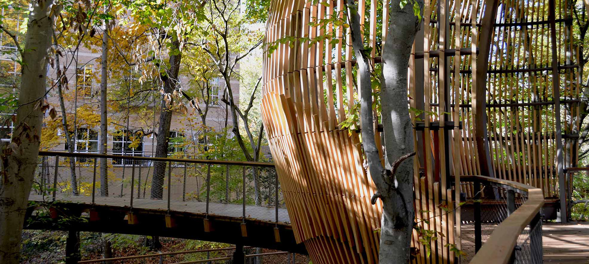 Fernbank Museum of Natural History - Canopy and Walking Bridge